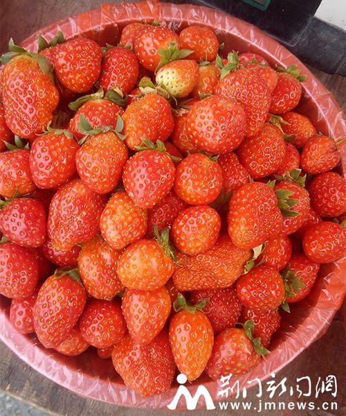 草莓包包钩针图解步骤