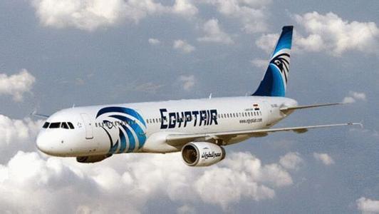 机上有40名埃及人