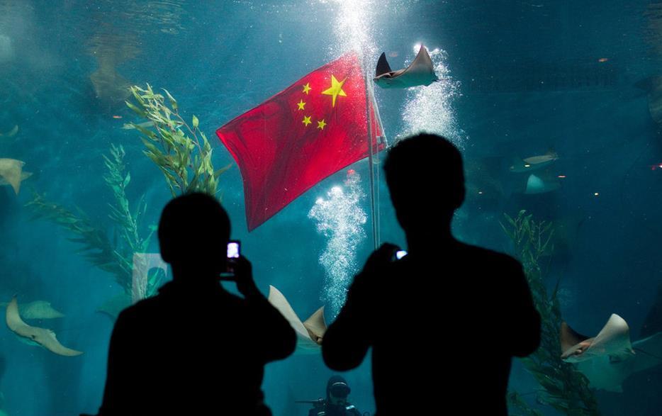 """上海水族馆在深海展区布置""""水下升旗""""仪式"""