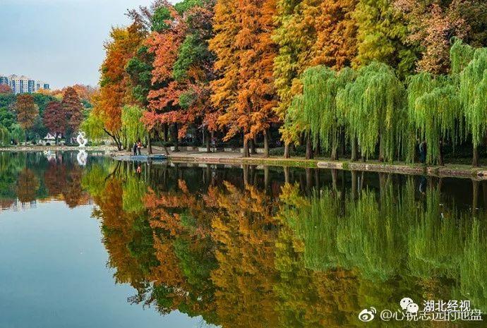 武汉东湖风景区秋天