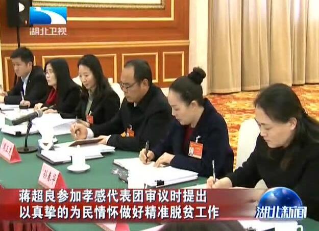 湖北省委书记、省长分别去孝感、恩施州、鄂州、随州代表团,强调了这些!