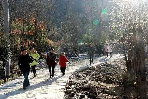 天门市乡村旅游依然火爆,一日游游客不减反增,赏花,垂钓,农事体验