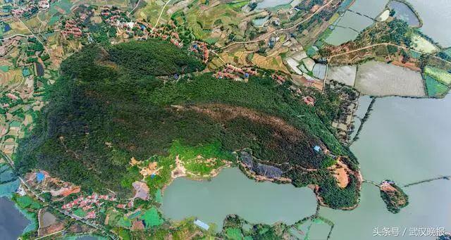 野生动物数量位居中南地区第一的武汉蔡甸西湖野生动物王国主题公园!
