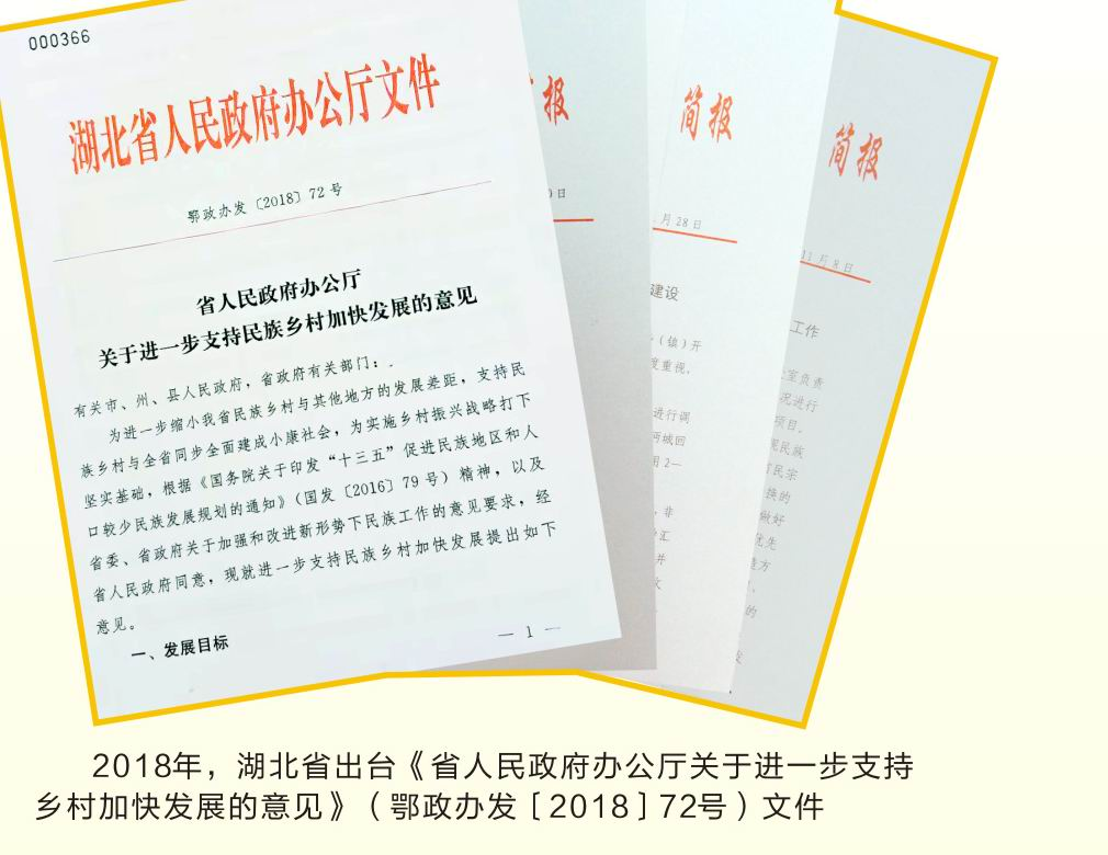 2018年,湖北省出台《关于进一步指出乡村加快发展的意见》