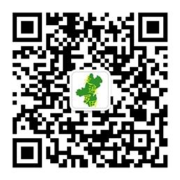 罗田新闻网