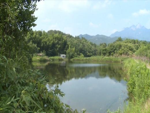 九資河村推進塆落整治  打造美麗鄉村人居環境示范點