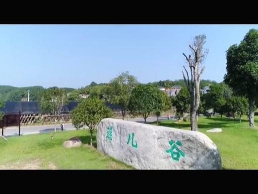 罗田县燕儿谷入选首批国家森林康养基地