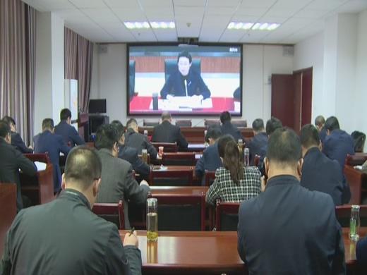 罗田县组织收听收看全市一季度经济运行及平安生产任务电视电话会