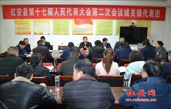 余学武等领导参加城关镇代表团、觅儿寺镇代表团分组审议