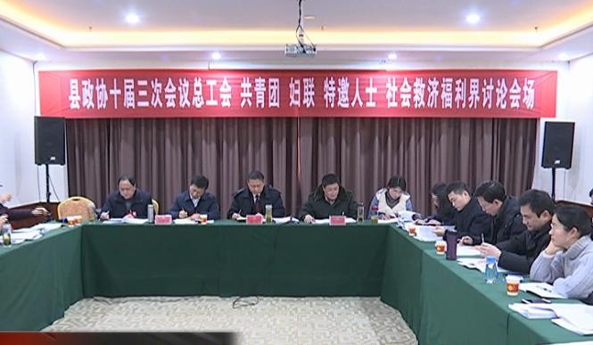 董昌、刘美华参加红安县政协十届三次会议 总工会、共青...