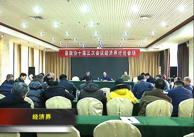 徐鼎荣、石胜芳参加红安县政协十届三次会议经济界分组讨...