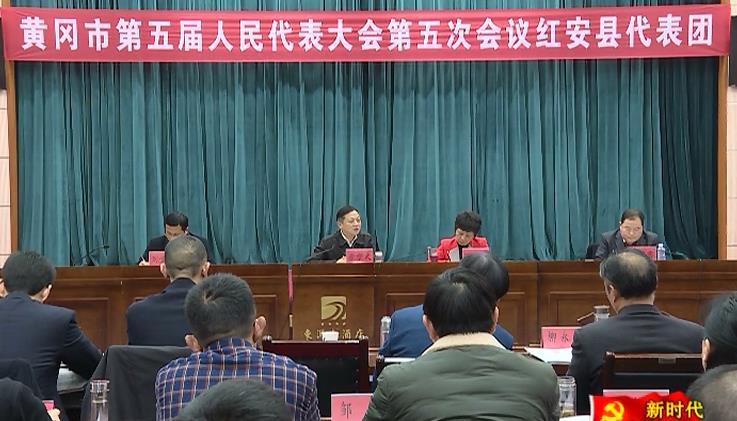 紅安代表團代表審議《黃岡市人民政府工作報告》 為紅安...