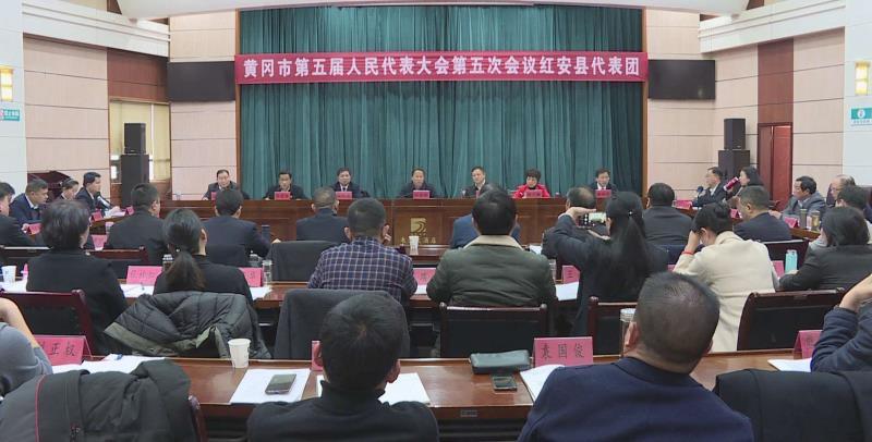 劉雪榮參加紅安代表團審議《黃岡市人民政府工作報告》