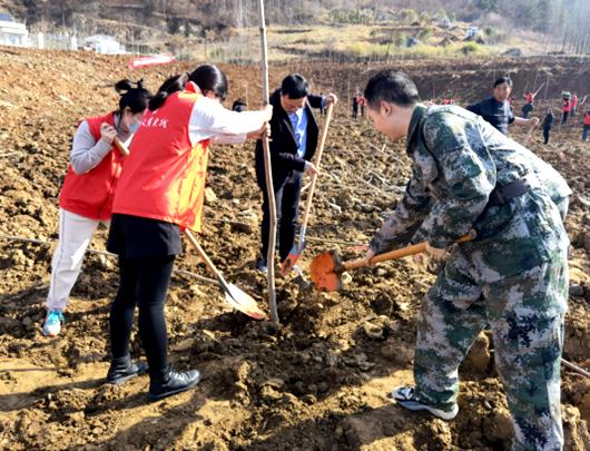 ?【春耕】白鹤镇:积极开展植树节活动