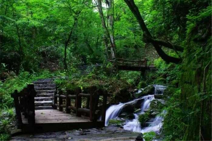 咸丰坪坝营原始森林 畅享 森呼吸