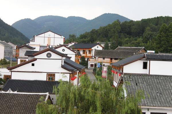 庭院美化面积28850平方米;村庄绿化面积达95%;100%农户用上了洁净的