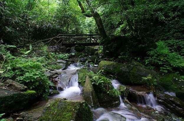第4天:游览川洞田园乡村游景区,坪坝营国家森林公园.