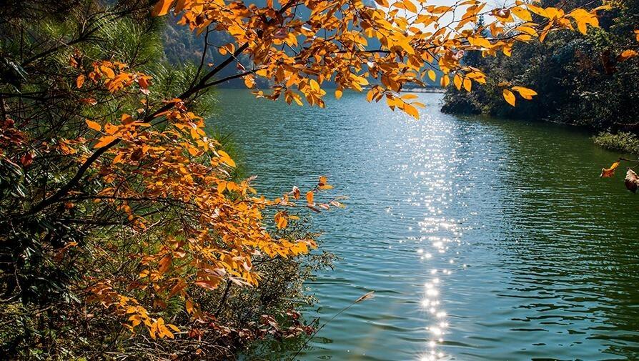 恩施这个地方的秋色太美!