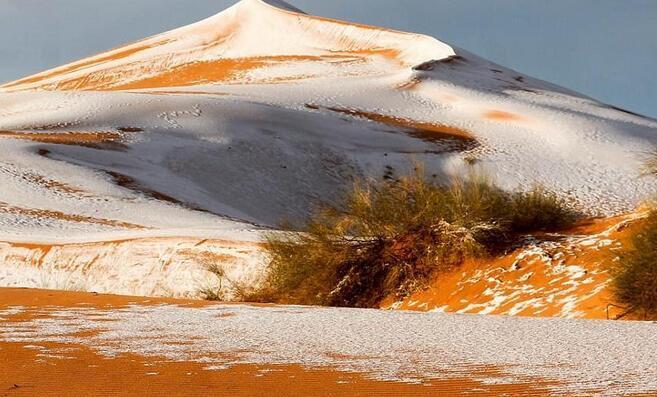 撒哈拉沙漠因降雪出现白沙丘奇观