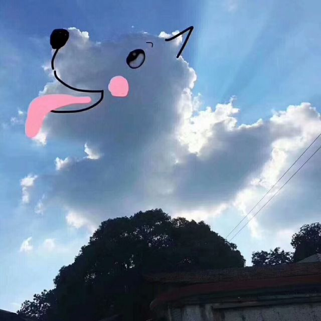 云朵上的藝術,鏡頭下的云彩簡直萌翻了