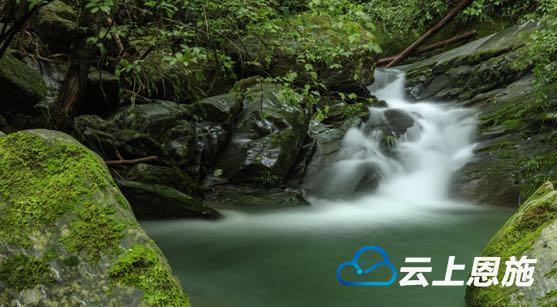 鹤峰:林间溪语