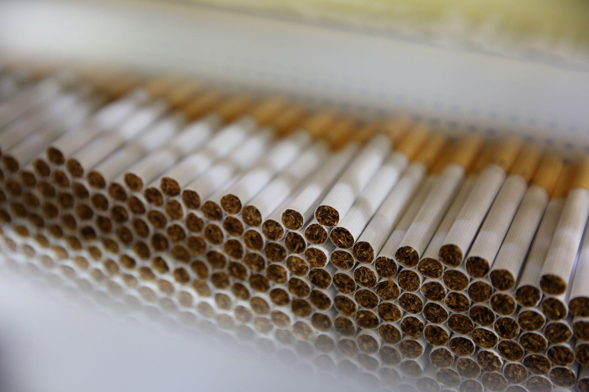 一支煙的誕生