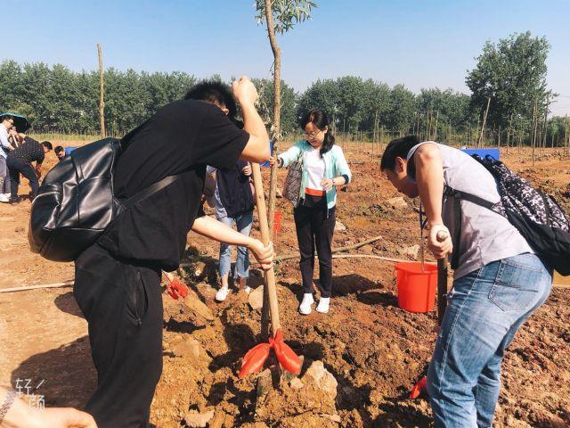 恩施州在長江畔的電視藝術林栽下友誼之樹