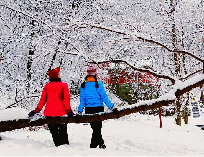 武當山冬雪