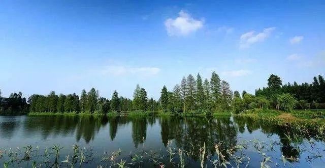 荆州休闲游玩新去处 即将新建大批公园、绿地!