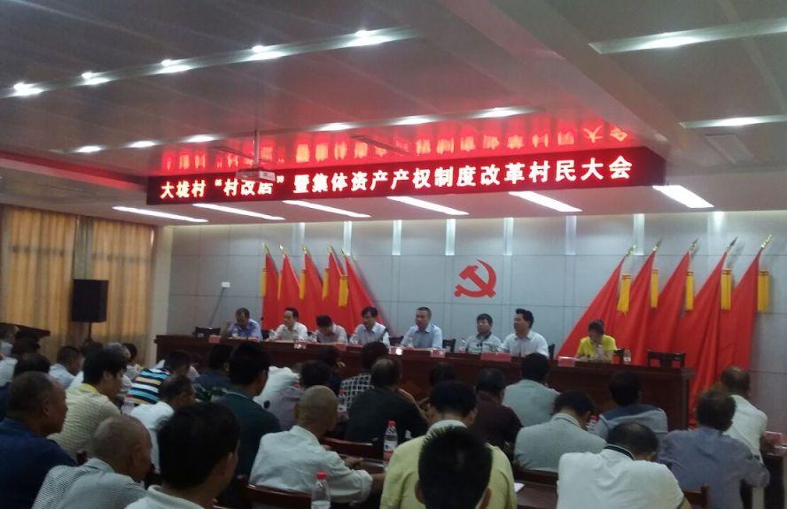 大垅村集体产权制度改革村民大会召开