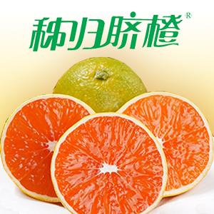 秭归脐橙销售,官方媒体背书。