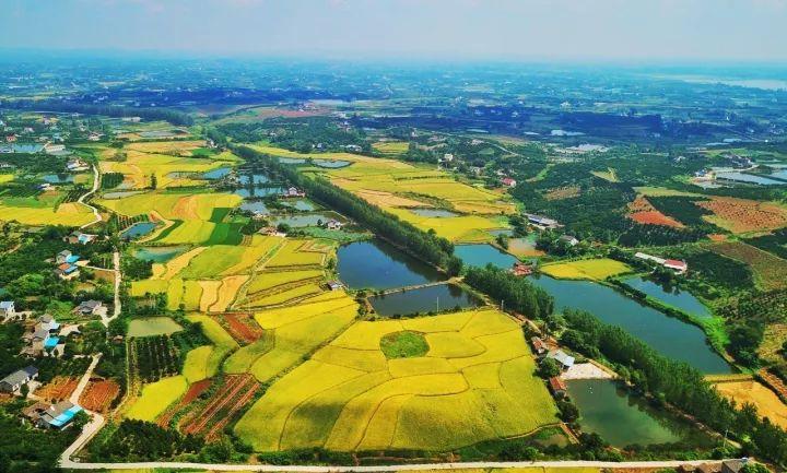 宜昌市枝江市风景图片