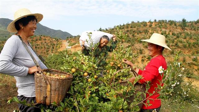 湖北2018年17个贫困县退出公示