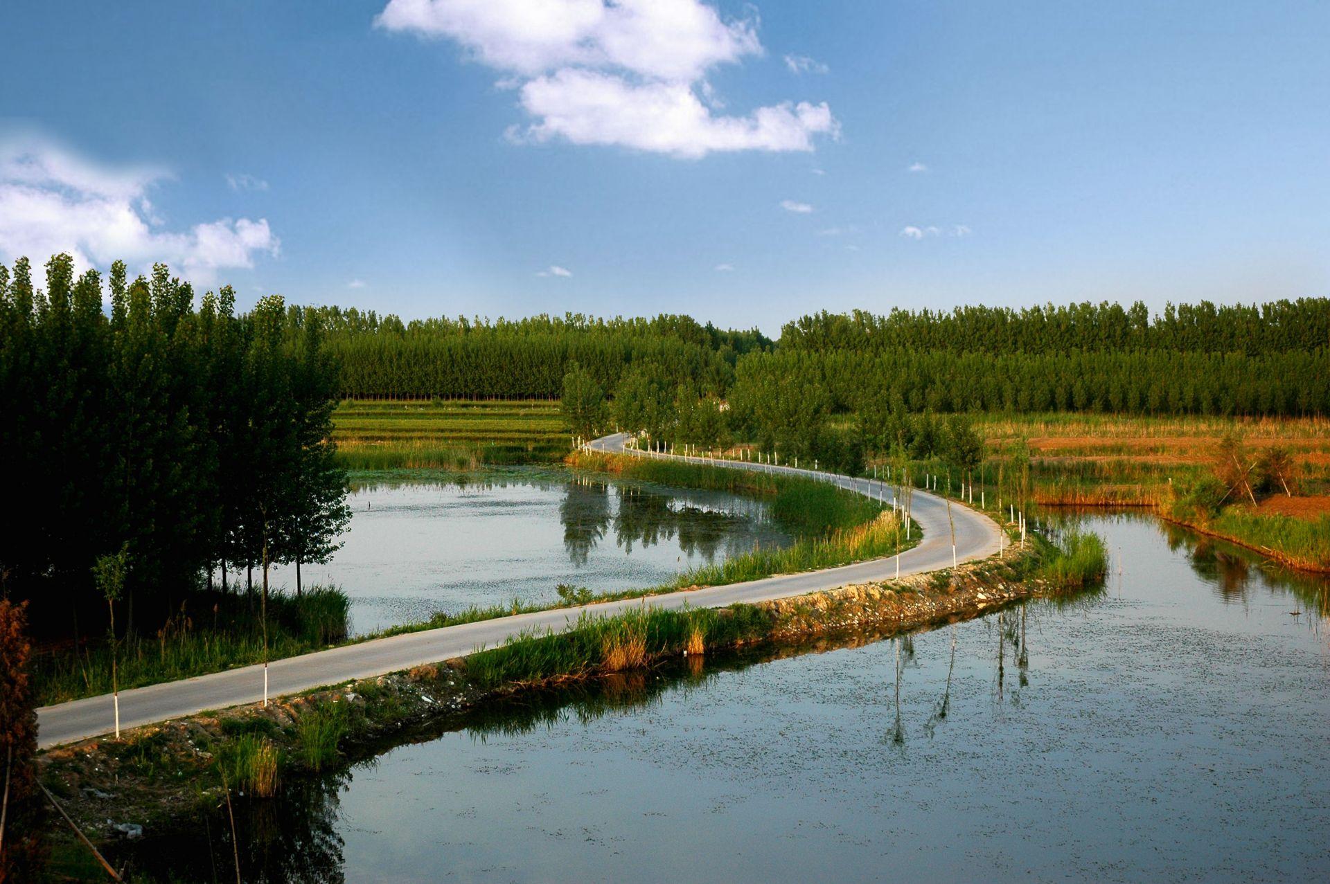 鳥類數由年平均3000增至15000余只!襄陽漢江國家濕地公園生態修復成效明顯