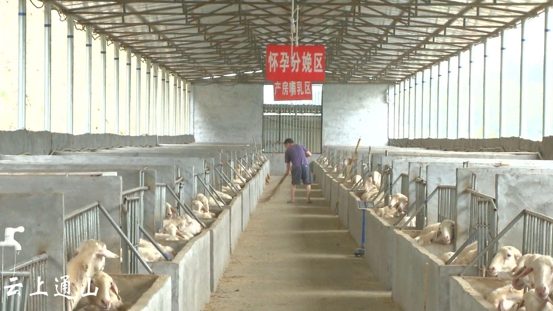 通山人口_通山县关于加强冬春季返乡人员疫情防控工作的通告