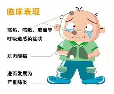 如何预防禽流感_h7n9禽流感在日常生活中如何预防?