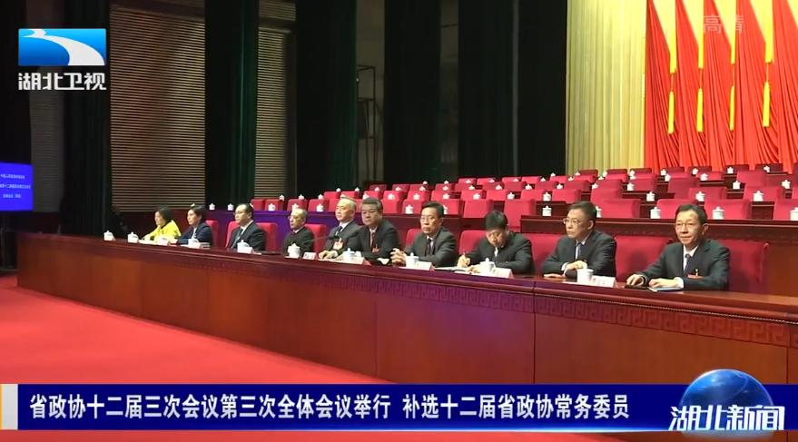 V视丨省政协十二届三次会议第三次全体会议举行 补选十二届省政协常务委员