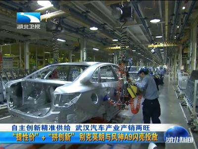 面对汽车产业结构调整