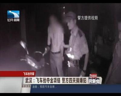 武汉:飞车抢夺金项链 警方四天擒嫌犯