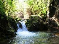 南漳藏了一条神奇的翡翠峡谷