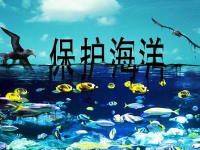 中国修法加大海洋环境污染处罚力度