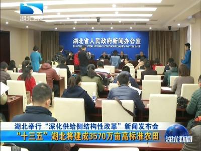 """湖北举行""""深化供给侧结构性改革""""新闻发布会"""