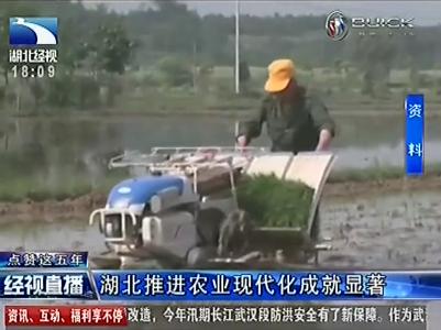 喜迎党代会 荆楚新跨越:湖北推进农业现代化成就显著