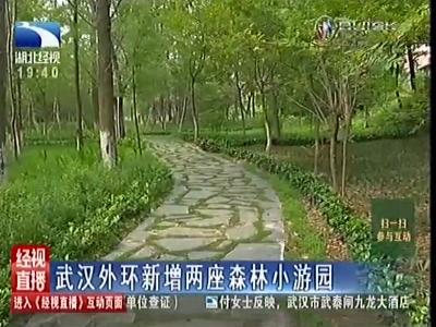 武汉人又有休闲好去处 外环新增两座森林小游园
