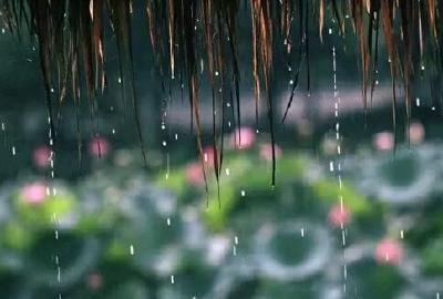 明日暴雨提前开启湖北梅雨季 2016暴力梅或难再现