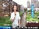 美哭!楼顶种蔬菜 ,天空农场开辟武汉闹市中的田园!