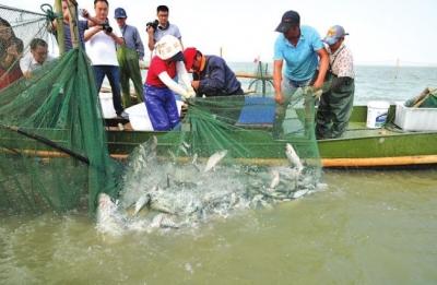 湖北79个水生生物保护区将全面禁捕