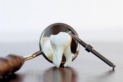 牙齿是骨骼的外显,健康须有一口好牙