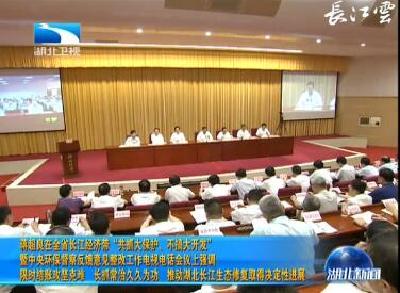 蒋超良强调:推动湖北长江生态修复取得决定性进展开发