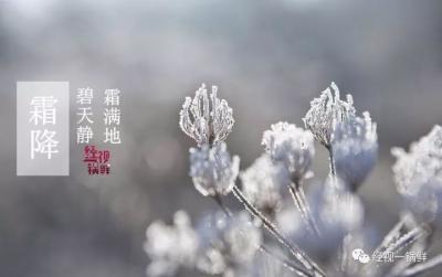 《经视一锅鲜》你准备好迎接冬天了吗?